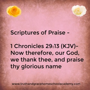 praise-1-chronicles-29-13