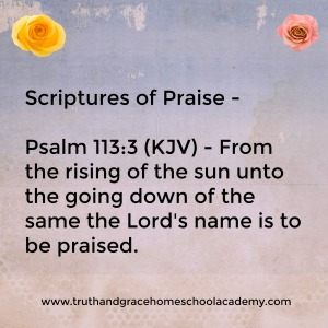praise-psalm-113-3