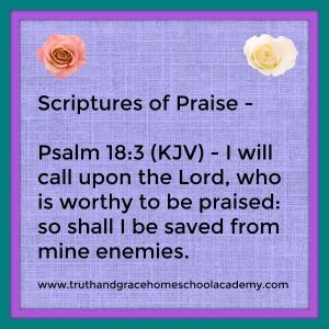 praise-psalm-18-3