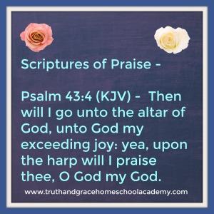 praise-psalm-43-4
