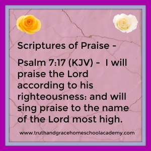 praise-psalm-7-17