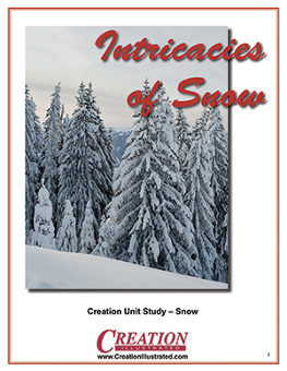 unit-study-snow-by-creation-illustrated