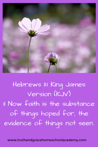Hebrews 11_1 King James Version (KJV)11 Now faith is the substance of things hoped for, the evidence of things not seen.