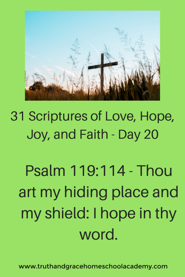 31 Scriptures of Love, Hope, Joy, and Faith - Day 20(1)