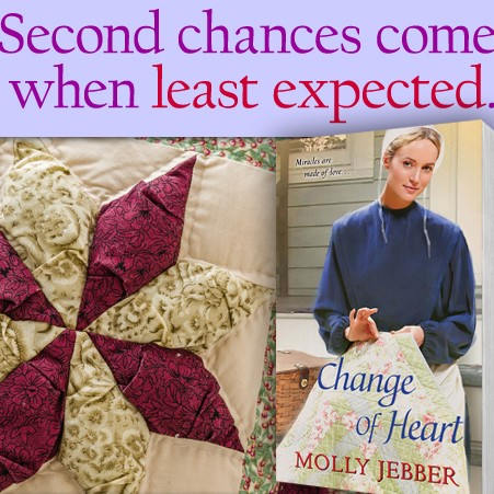 Change-of-Heart cover with extra quilt (2)